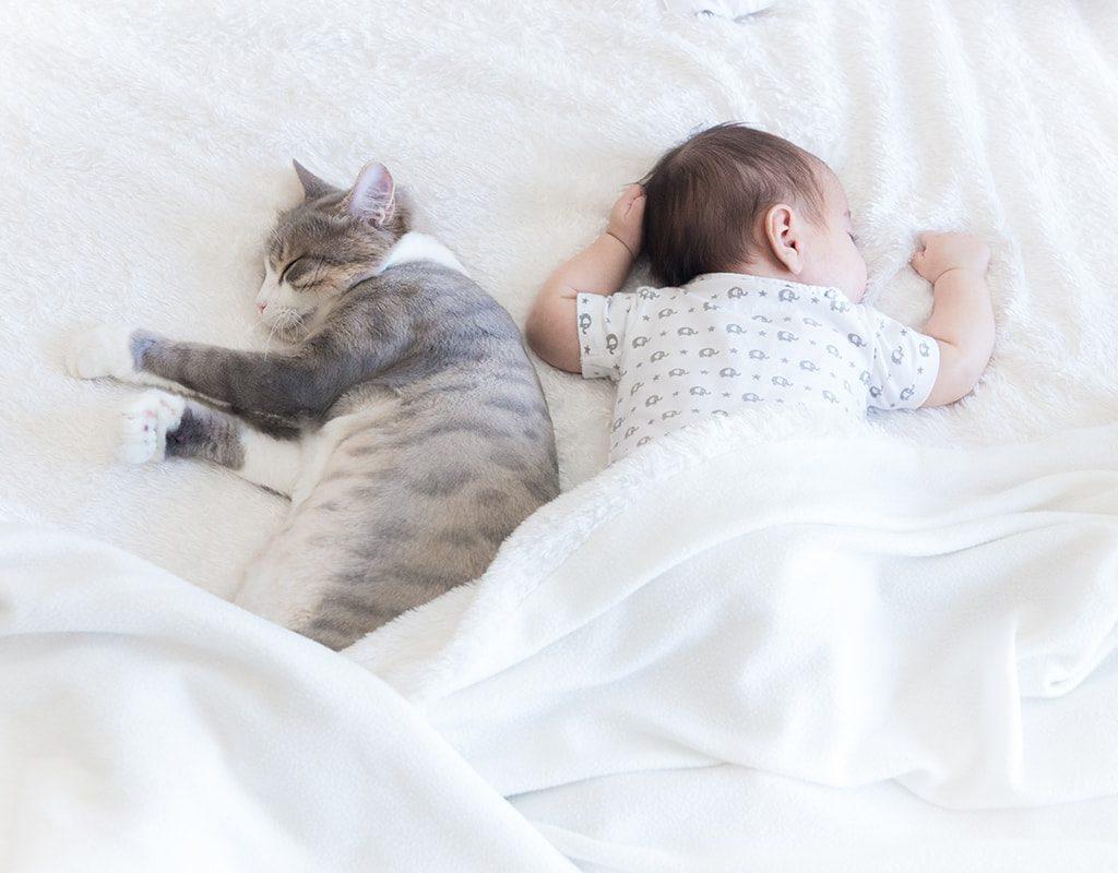 Hello Baby Geboortefotografie